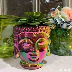 🆕 Buddha Rainbow Iridescent Planter